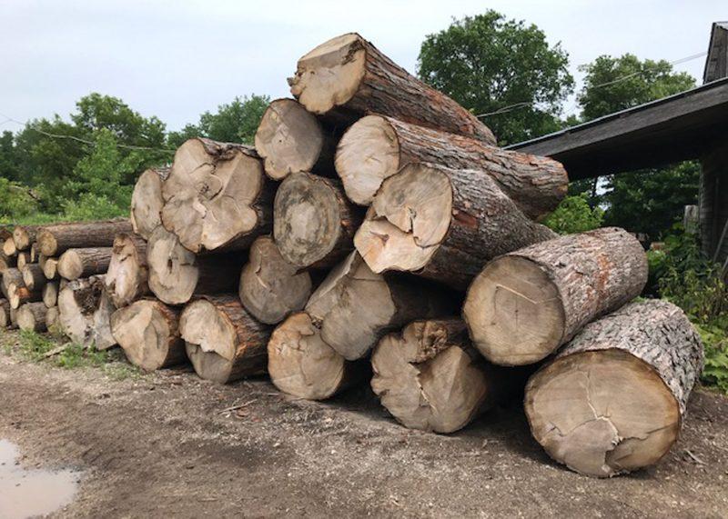 Logging and New Kiln - Buy Custom Amish Furniture | Amish